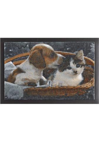 HANSE HOME Durų kilimėlis »Animals 2« rechteckig ...