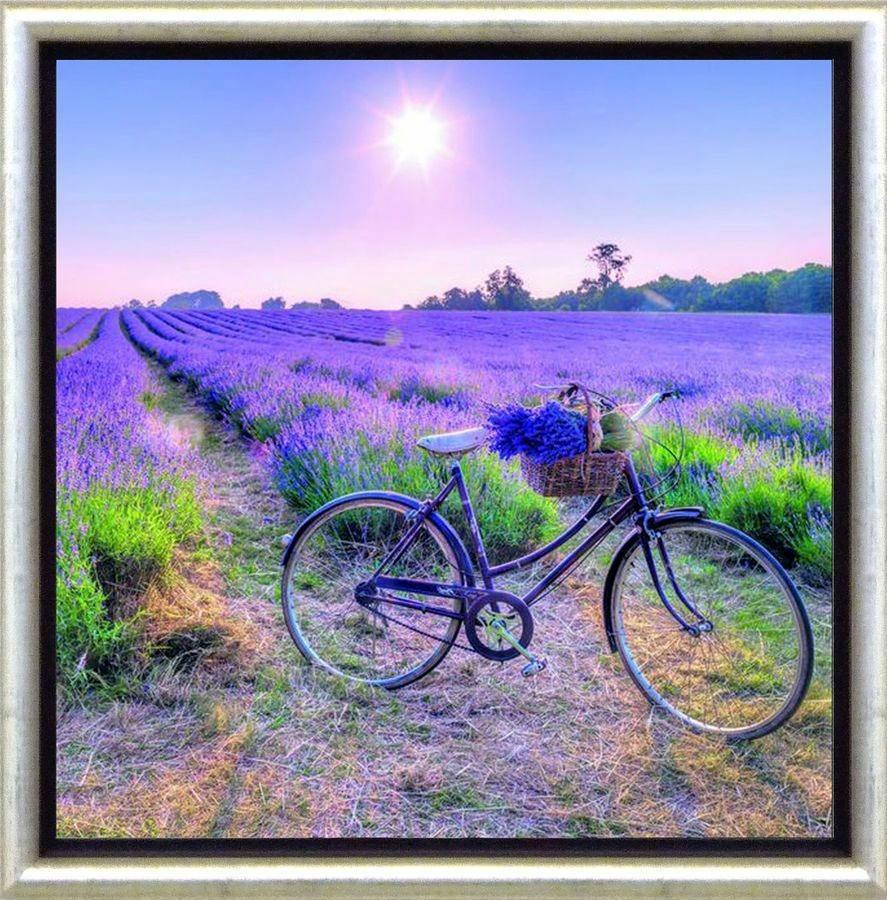 Premium Picture Schattenfugenbild »Fahrrad am Lavendelfeld«, 30/30 cm in lila