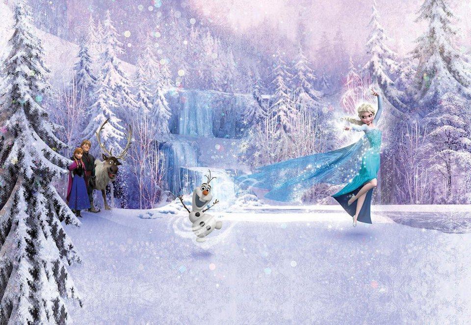 Komar Fototapete »Frozen Forest«, 368/254 cm in weiß/grau/blau