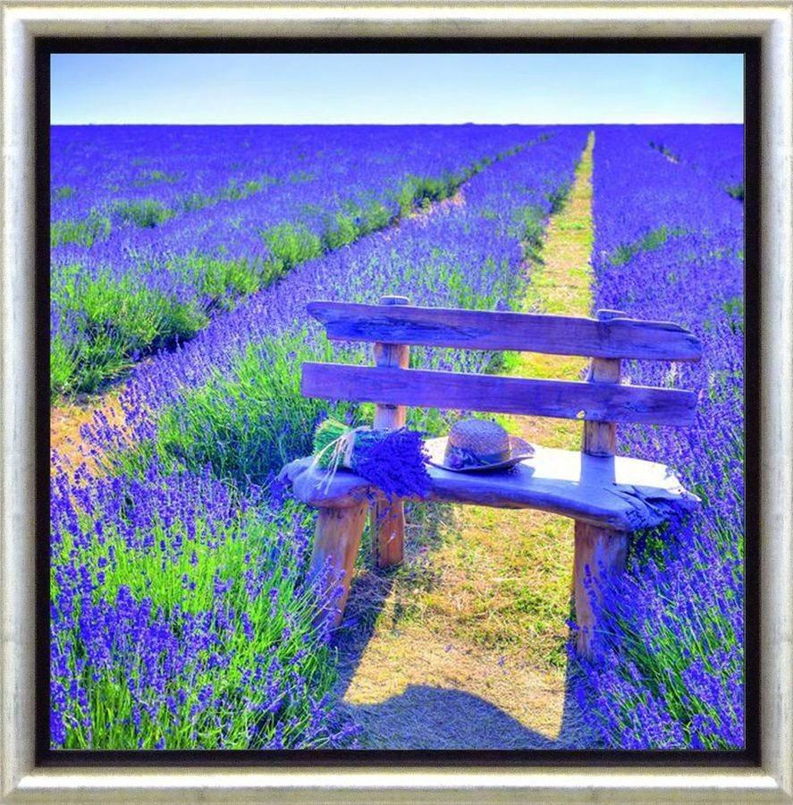 Premium Picture Schattenfugenbild »Bank im Lavendelfeld«, 30/30 cm in lila