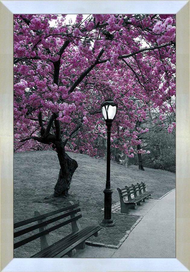 Premium Picture Wandbild »Wegrand im Park«, 60/90 cm in lila/grau