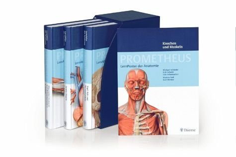 Gebundenes Buch »PROMETHEUS LernPaket Anatomie«
