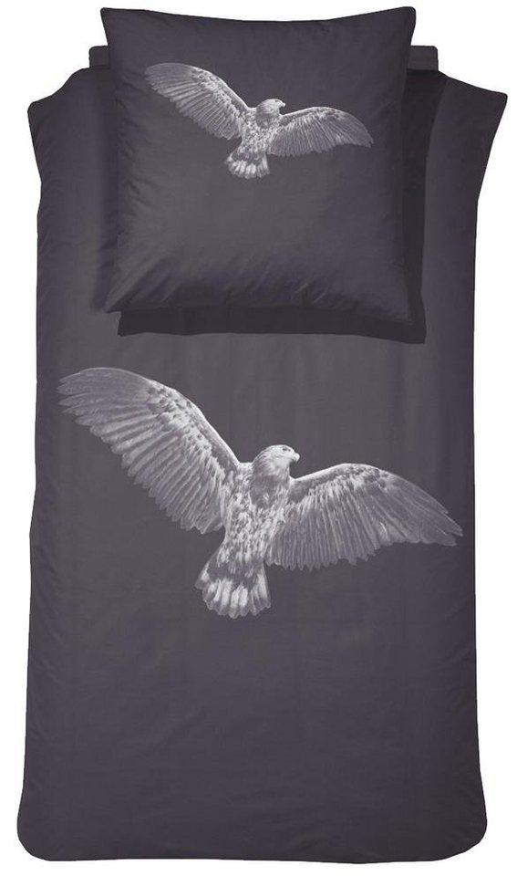 Bettwäsche, Damai, »Eagle«, mit Adler Motiv in mauve