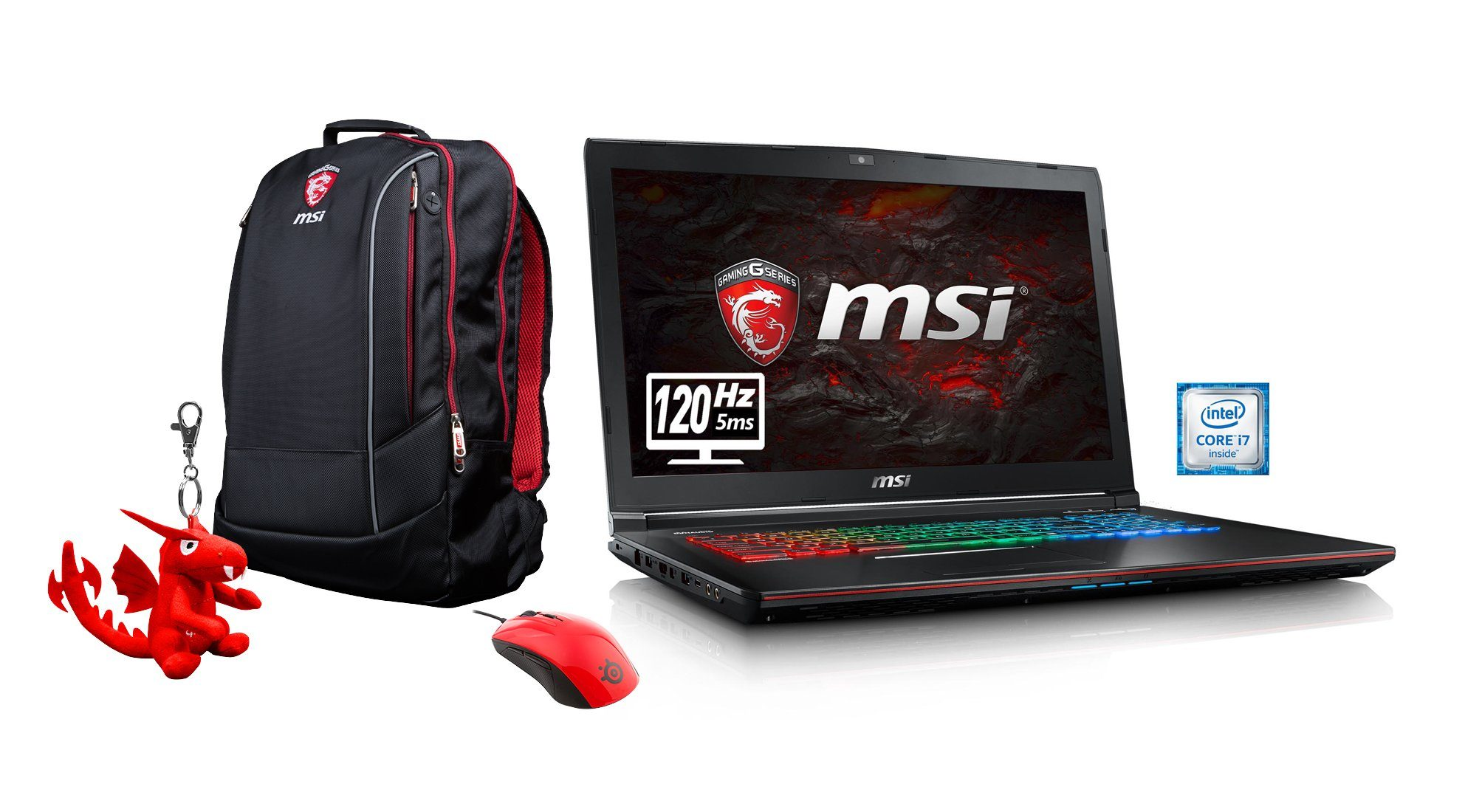 "MSI 17,3"", Intel® i7-6700HQ, 16GB, SSD + HDD, GeForce® GTX 1060 »GE72VR-6RFAC16H11 (00179B-SKU32)«"