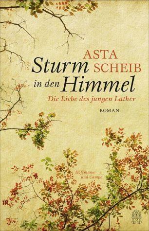 Gebundenes Buch »Sturm in den Himmel«
