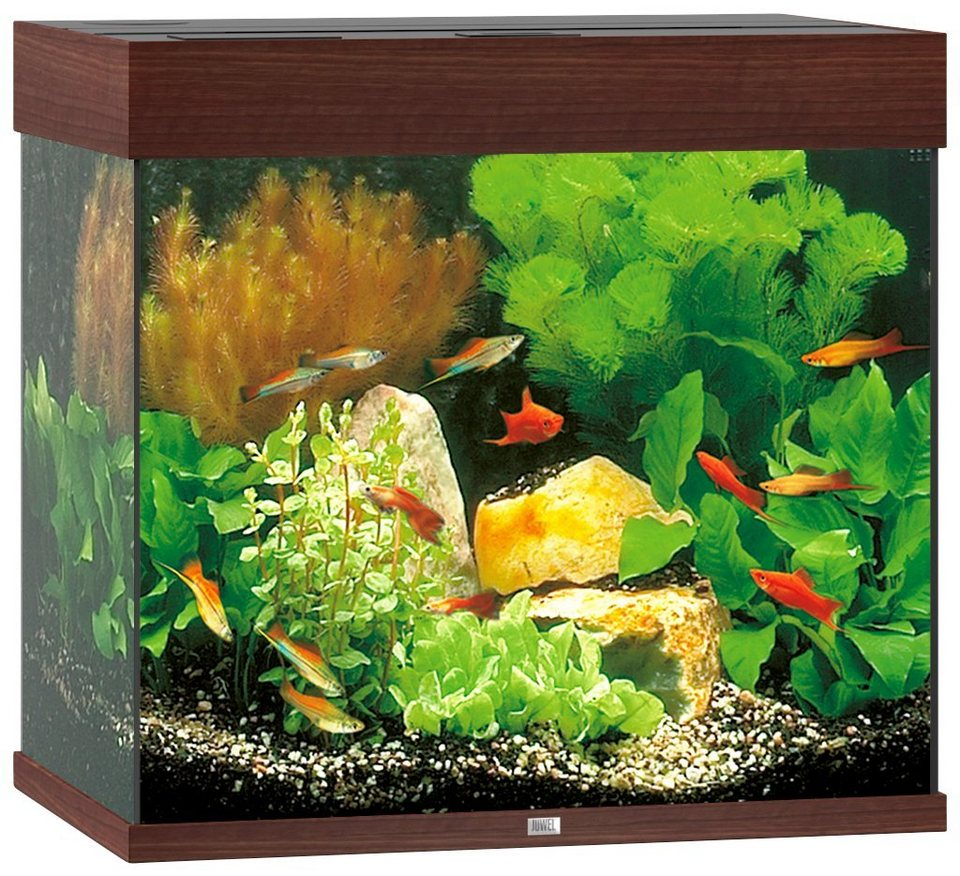Aquarium »Lido 120«, helles Holz in helles Holz
