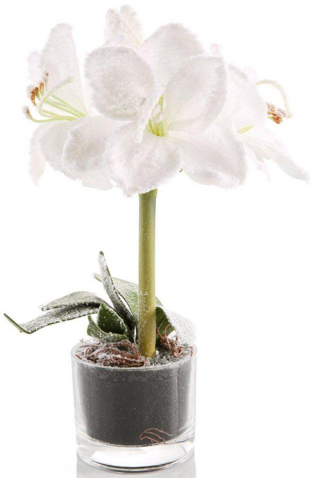 Kunstpflanze »Amaryllis« in weiß, grün