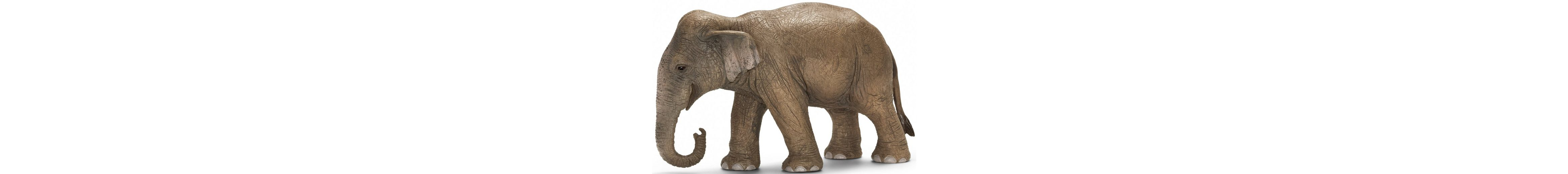 Schleich® Spielfigur, »Wild Life, Asiatische Elefantenkuh«