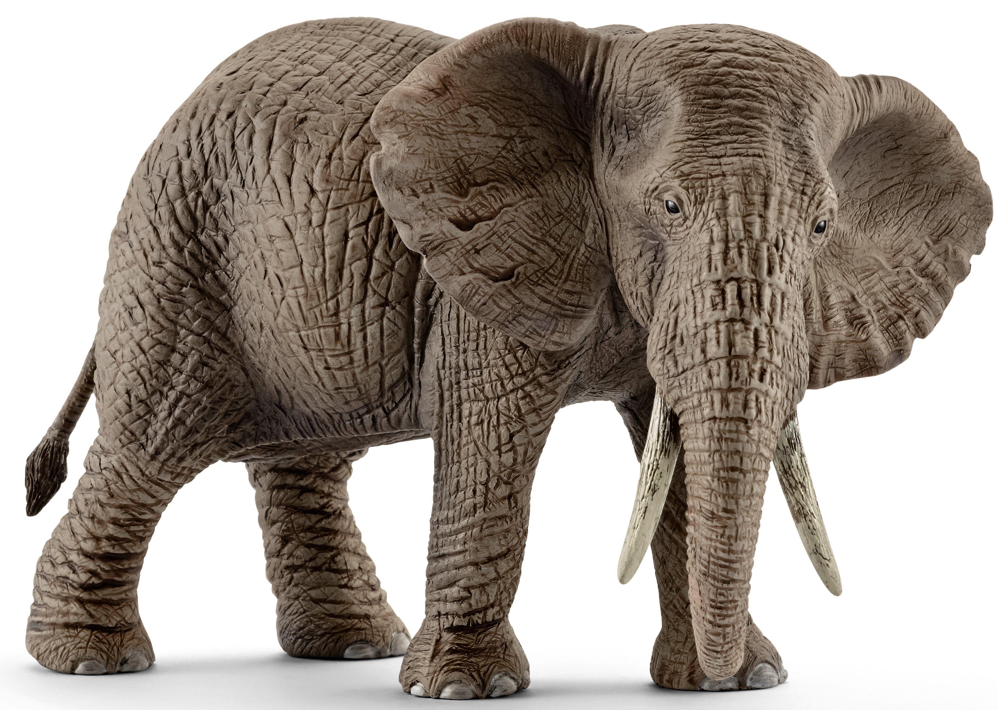 Schleich® Spielfigur (14761), »Wild Life, Afrikanische Elefantenkuh«
