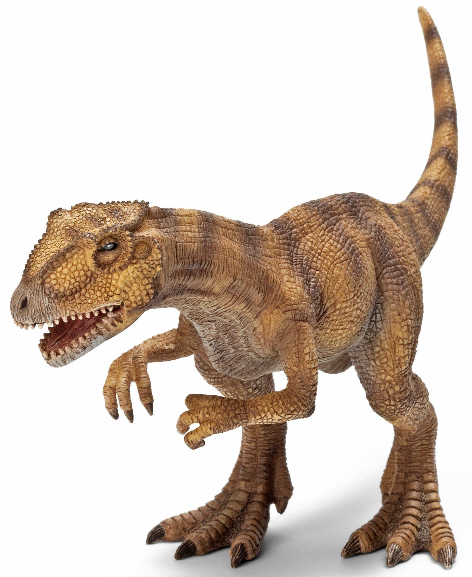 Schleich® Spielfigur, »Dinosaurs, Allosaurus«