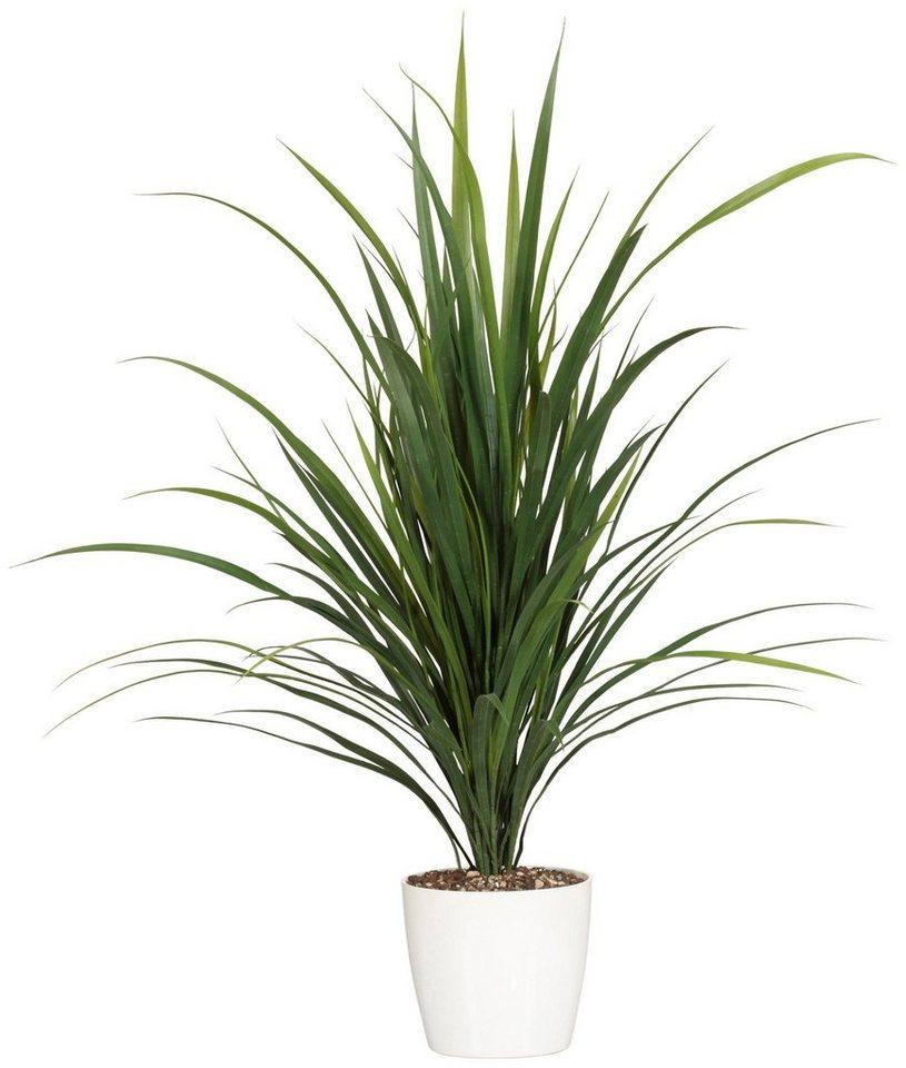 Kunstpflanze »Flussgrasbusch« inkl. Pflanzgefäß in grün