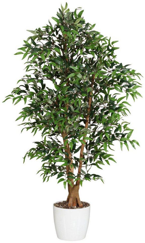 Kunstpflanze »Ruscusbaum« inkl. Pflanzgefäß in grün