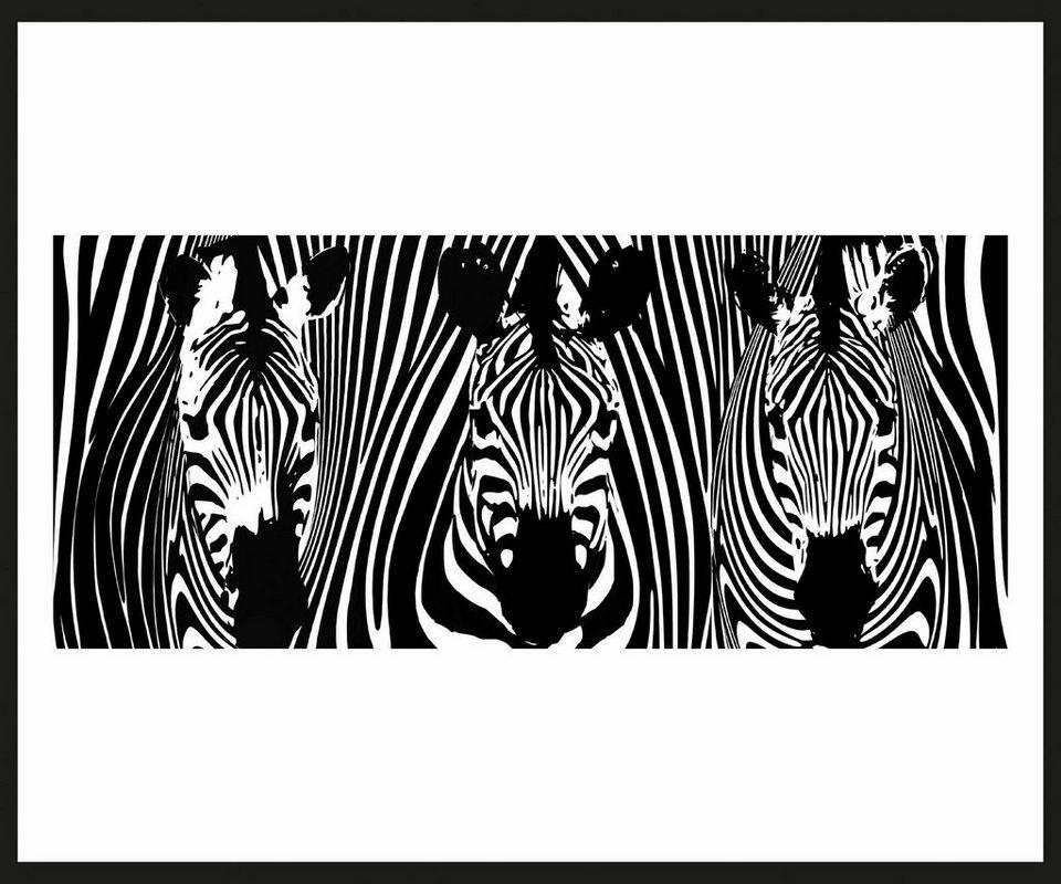 Home affaire Rahmenbild »Drei Zebras«, 60/50 cm in weiß/schwarz