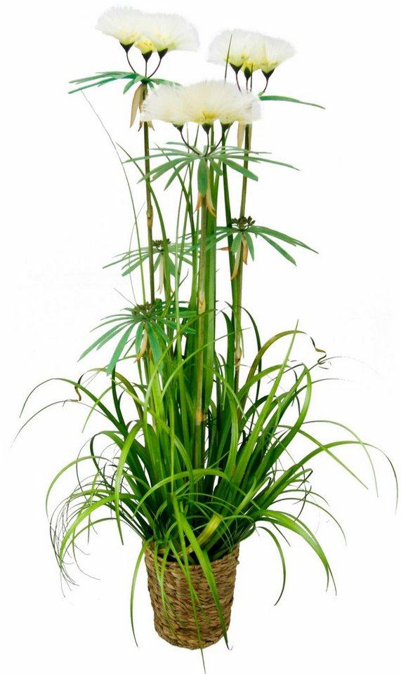 Home affaire Kunstpflanze »Papyrusgras« im Topf in weiß
