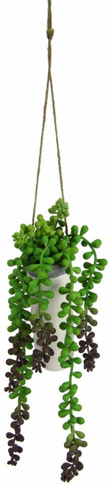 Home affaire Kunstblume »Senecio« im Keramiktopf in grün