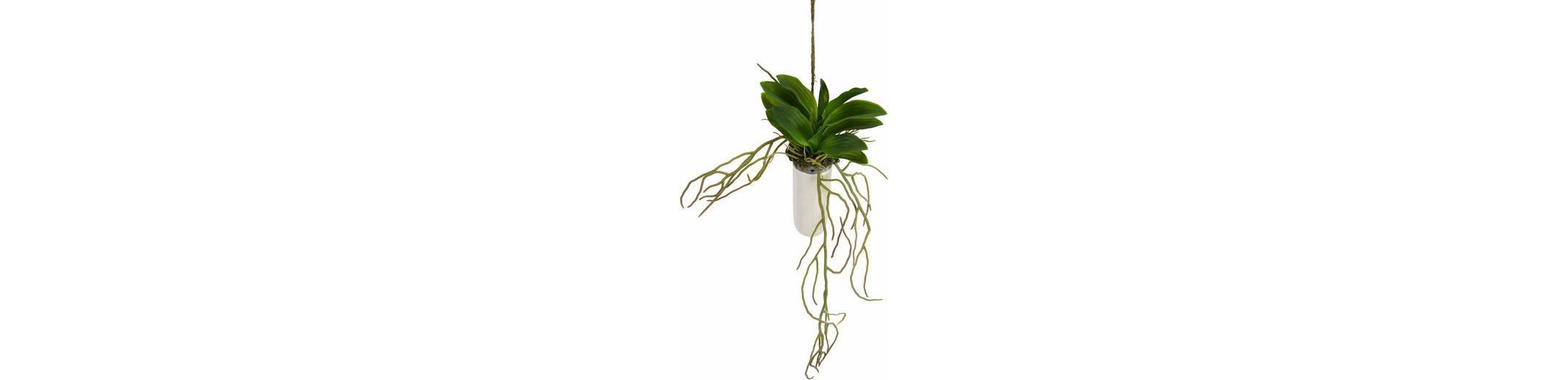Home affaire Kunstblume »Orchideenblätter«