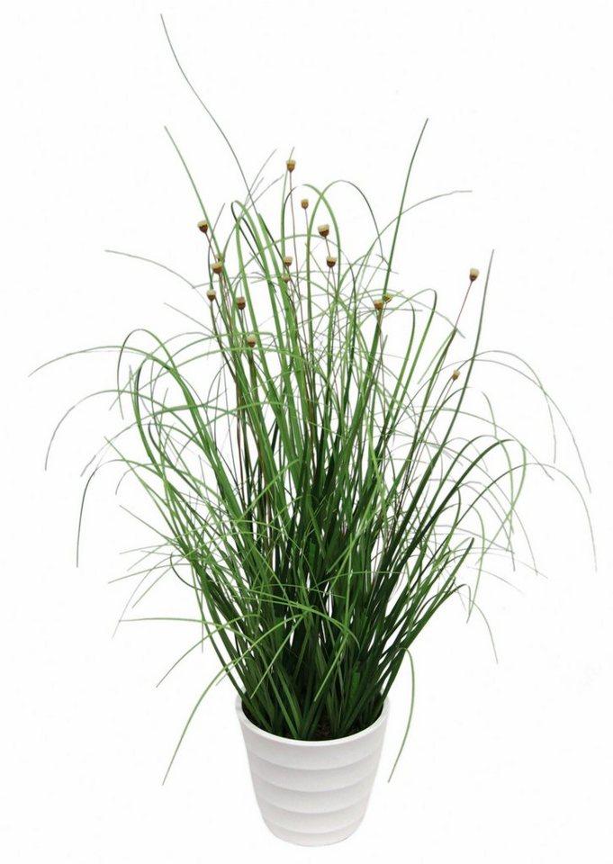 Home affaire Kunstpflanze »Grasbusch« im Topf in grün
