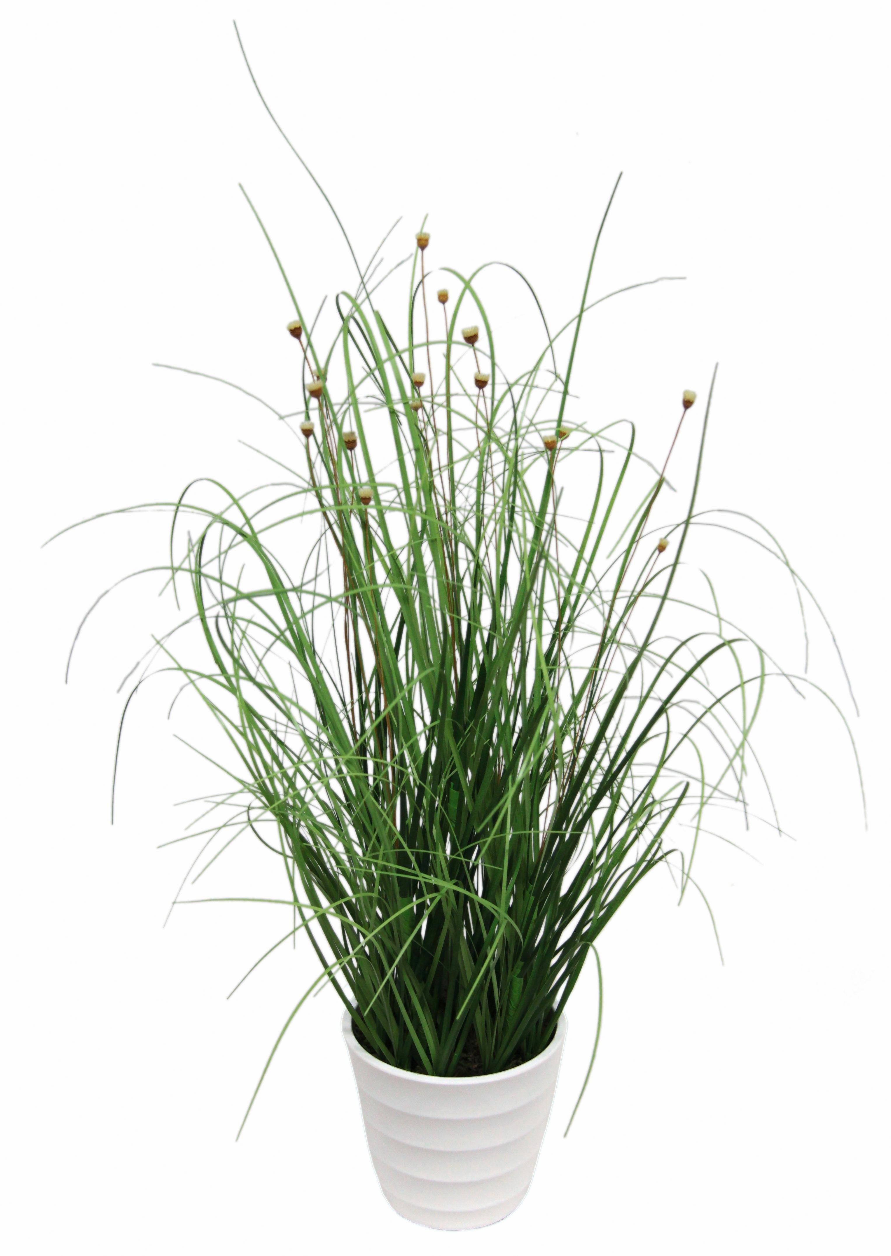 Home affaire Kunstpflanze »Grasbusch« im Topf