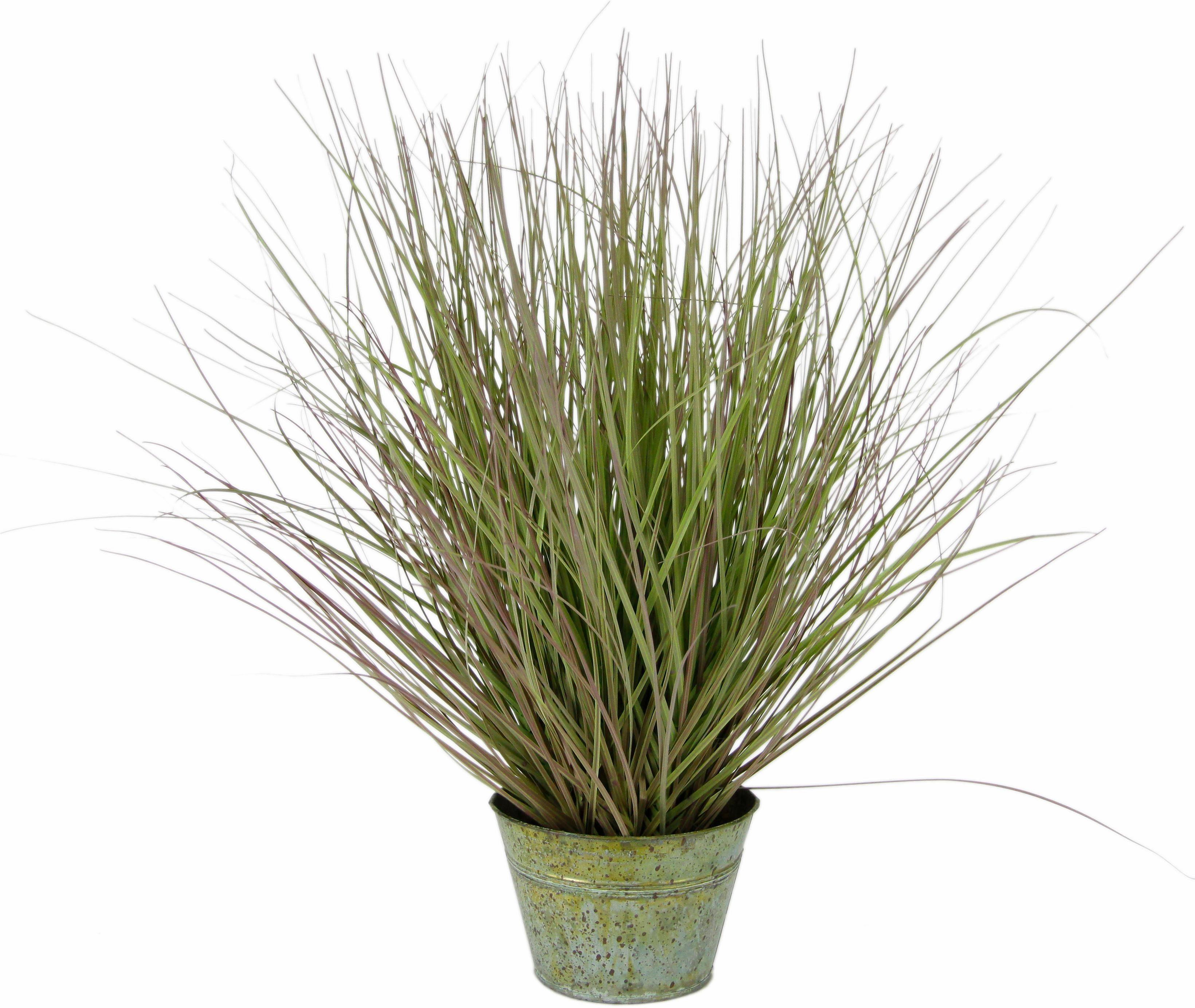Home affaire Kunstpflanze »Grasbusch« im Zinktopf