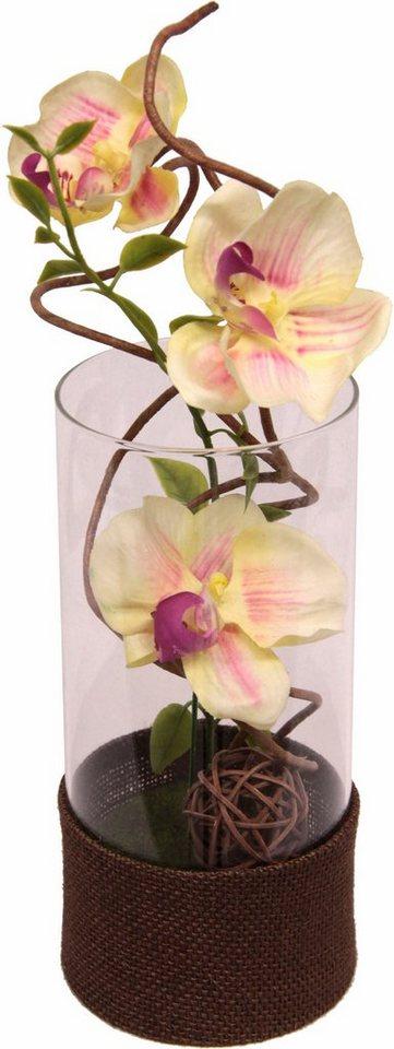 Home affaire Kunstblume »Orchidee« im Glas in weiß/rosa