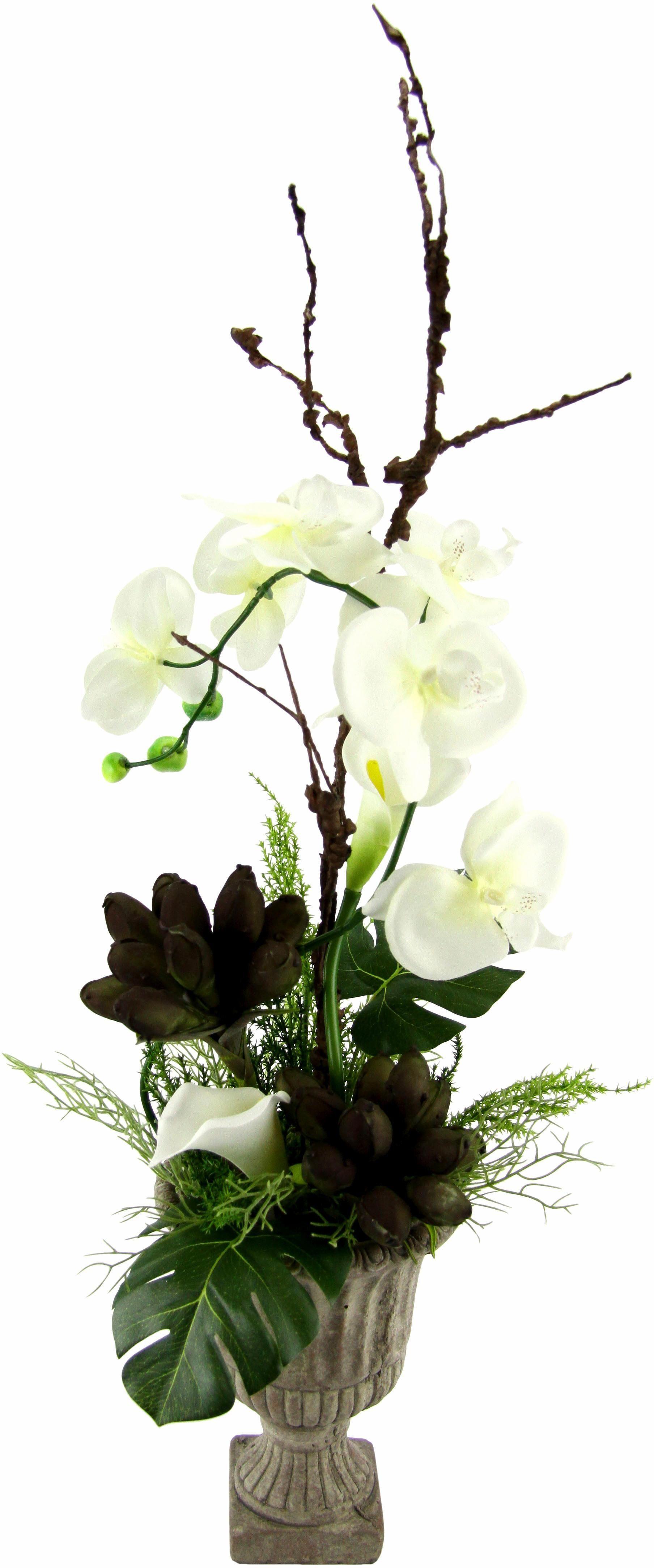Home affaire Kunstblume »Orchidee« im Pokal