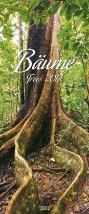 Kalender »Bäume 2017. PhotoArt Vertikal Kalender«