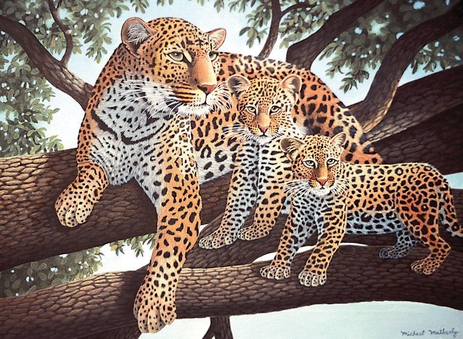 Royal Langnickel Malen nach Zahlen, Junior Large, Leoparden