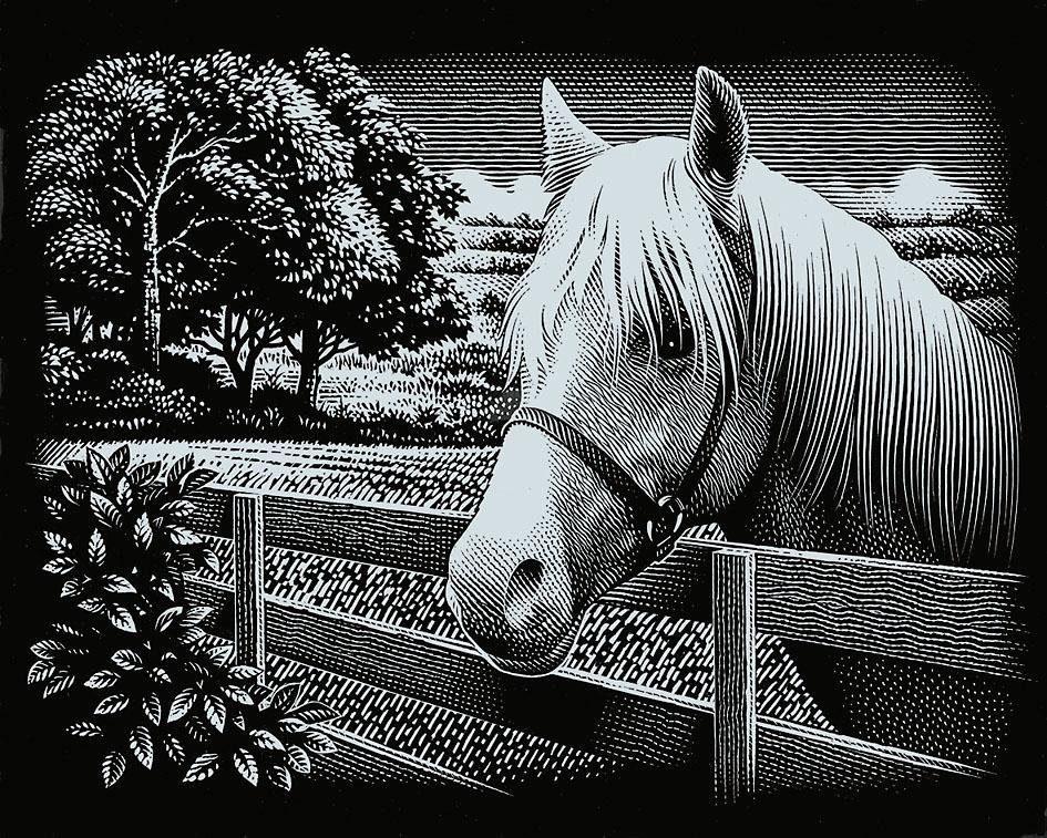 Scraper Kratzbilder, Mein Pferd