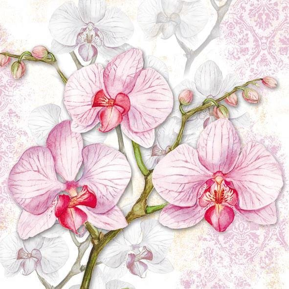 "Serviette ""Rosa Orchidee"""