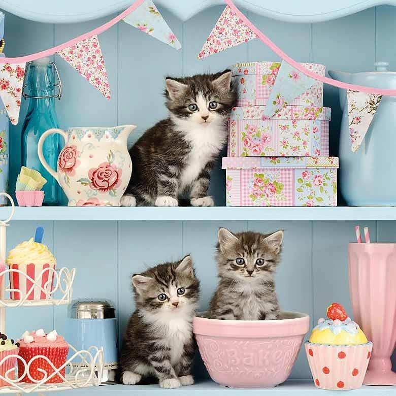 """Serviette """"Kitchen Cats"""""""