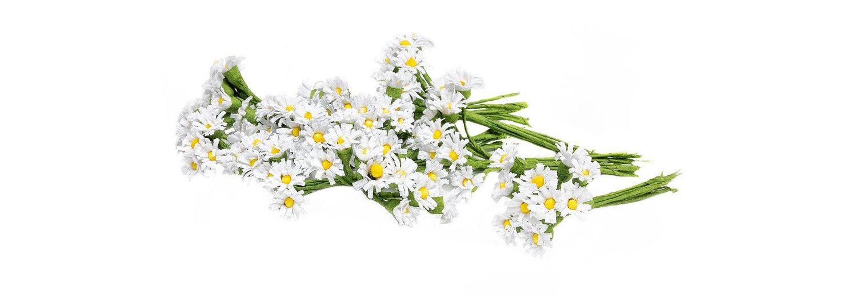 VBS Großhandelspackung 100 Papierblüten