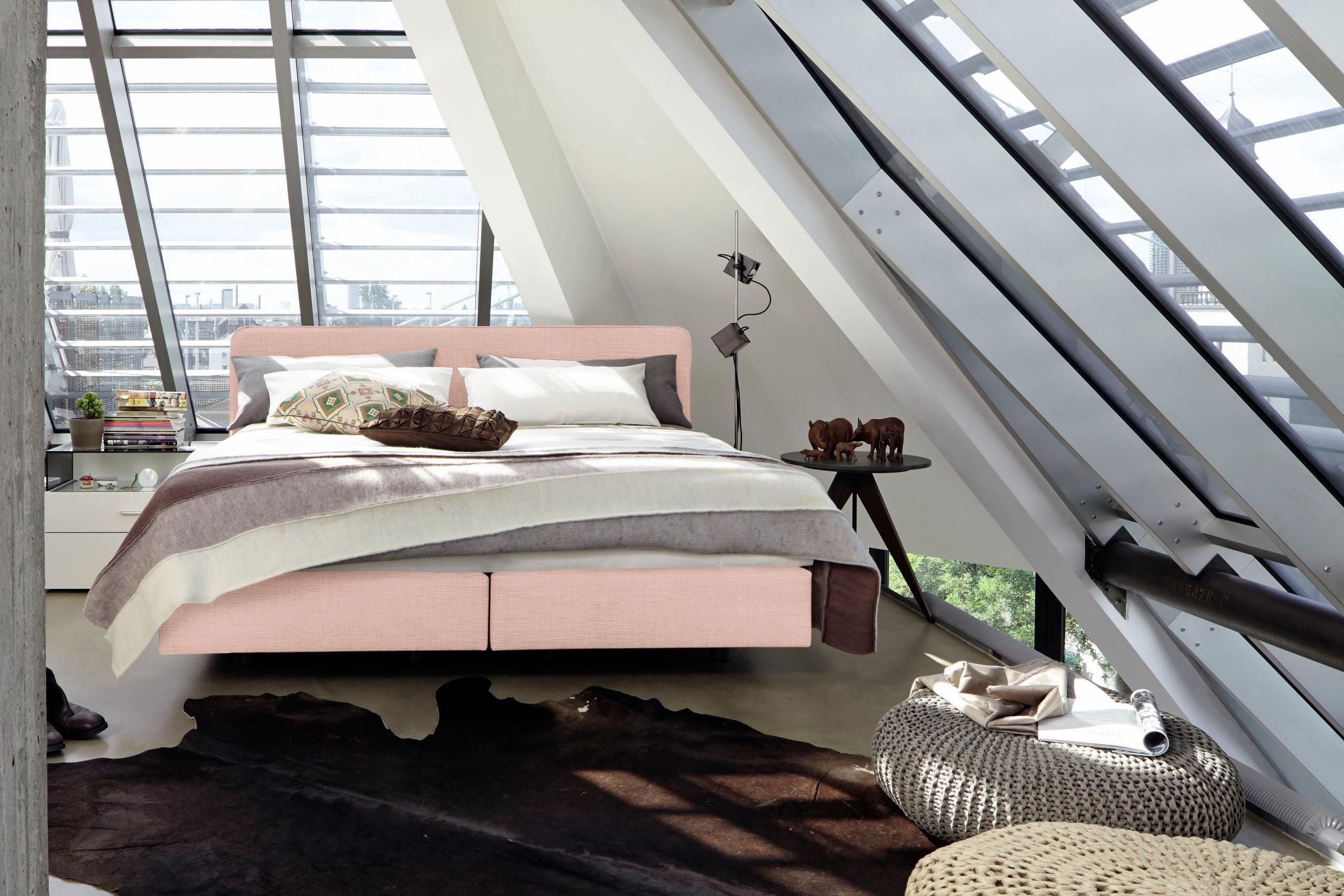 hasena bett oak modul vaco varus 160x200 cm. Black Bedroom Furniture Sets. Home Design Ideas