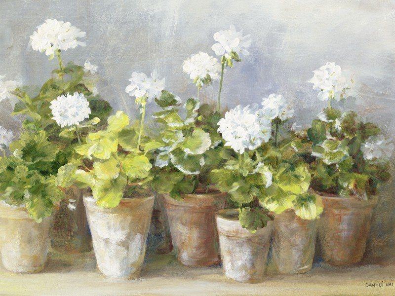 Artland Poster oder Leinwandbild »Botanik Blumen Geranie Malerei Weiß« in Weiß
