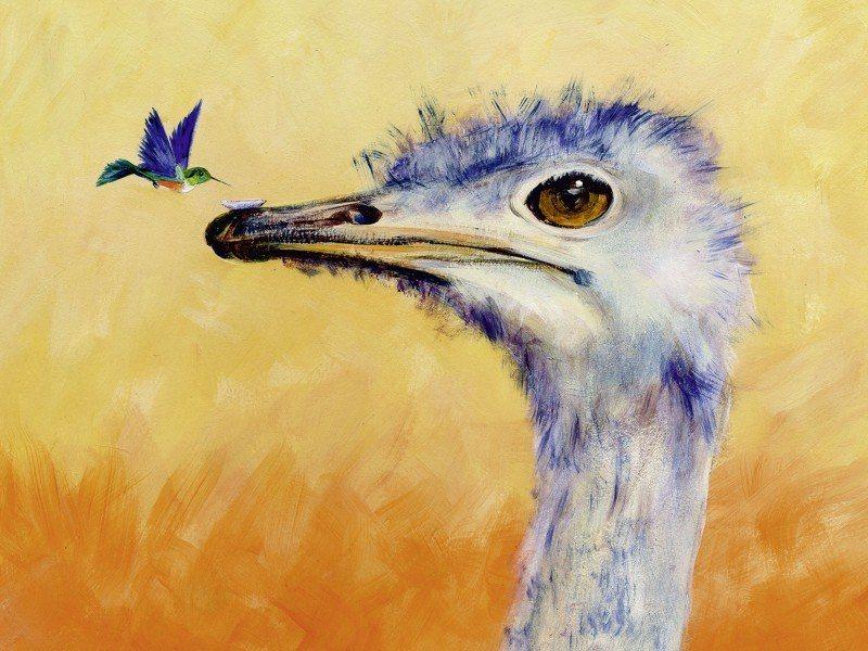 Artland Poster oder Leinwandbild »Tiere Vögel Malerei Orange« in Orange