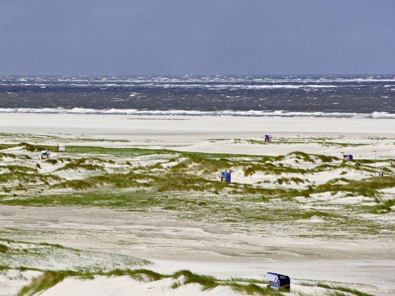 Artland Poster oder Leinwandbild »Landschaften Strand Fotografie Creme« in Creme