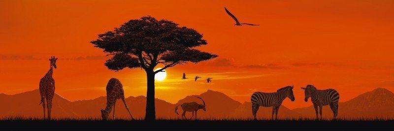 Artland Poster oder Leinwandbild »Landschaften Afrika Digitale Kunst Orange« in Orange