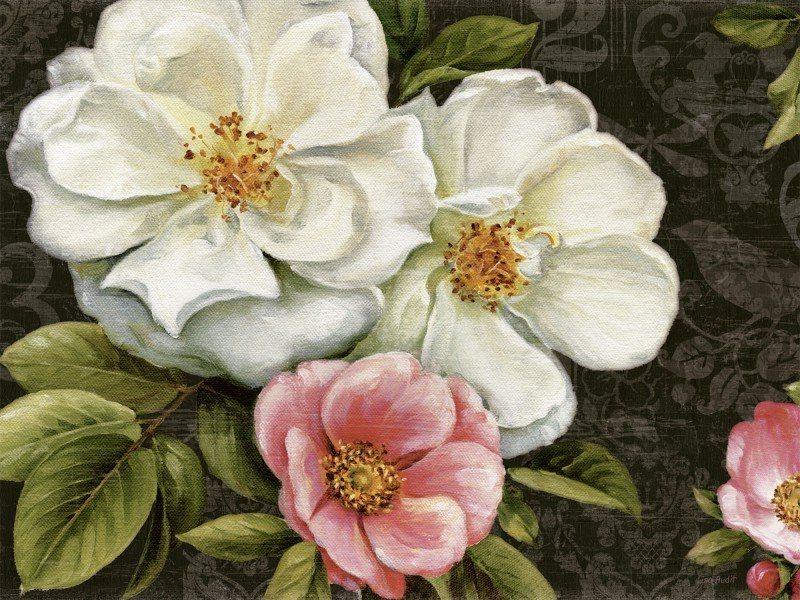 Artland Poster oder Leinwandbild »Botanik Blumen Malerei Weiß« in Weiß