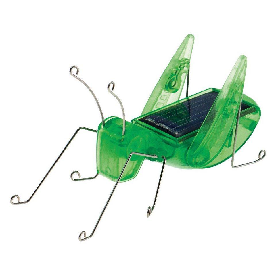 Edu-Toys Bausatz solarbetriebener Grashüpfer
