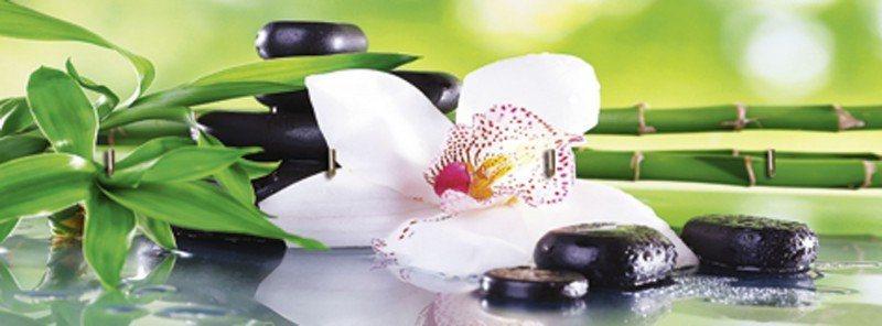 Artland Schlüsselbrett »Wellness Zen Pflanze Fotografie Grün« in Grün