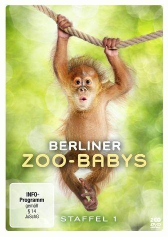 DVD »Berliner Zoo-Babys - Staffel 1 (2 Discs)«