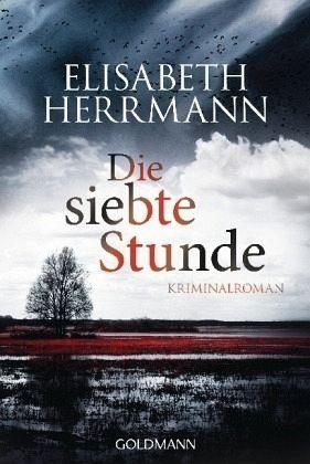 Broschiertes Buch »Die siebte Stunde / Joachim Vernau Bd.2«