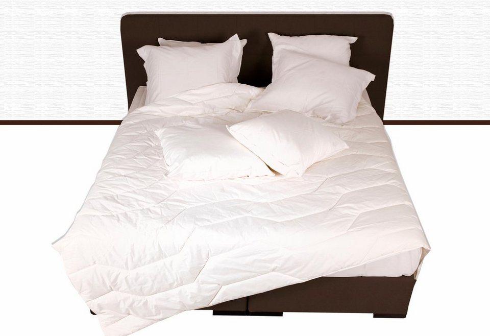 4 jahreszeitenbett deltex natural cotton baumwolle 4. Black Bedroom Furniture Sets. Home Design Ideas