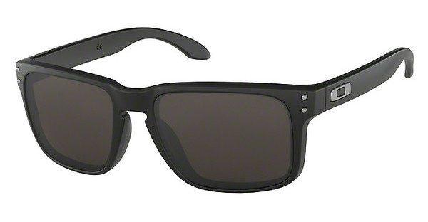 Oakley Herren Sonnenbrille »HOLBROOK OO9102« in 910201 - schwarz/grau