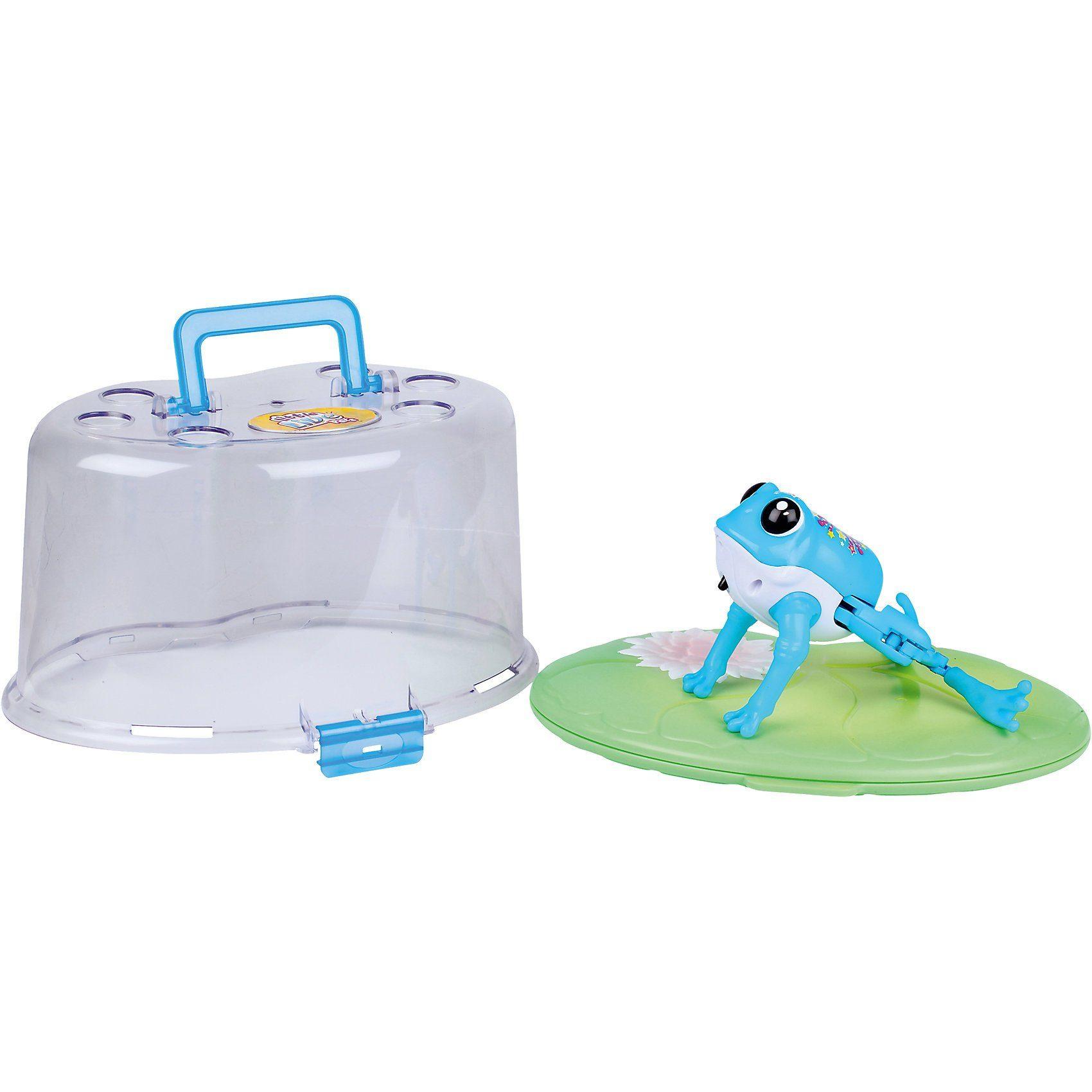 BOTI Little Live Pets Frosch mit Terrarium