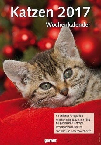 Kalender »Wochenkalender Katzen 2017«
