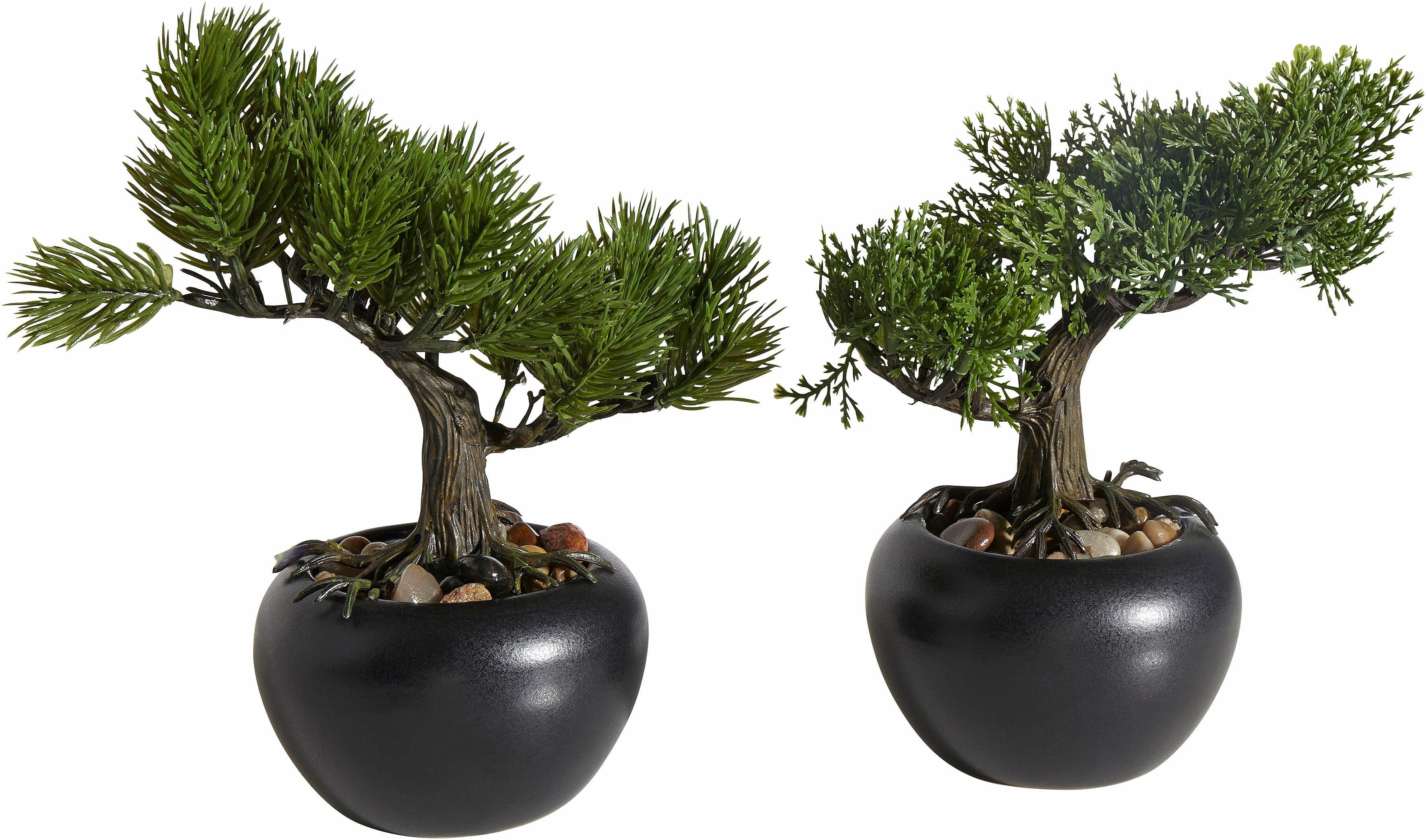 Home affaire Kunstpflanze »Bonsai« (2er Set)