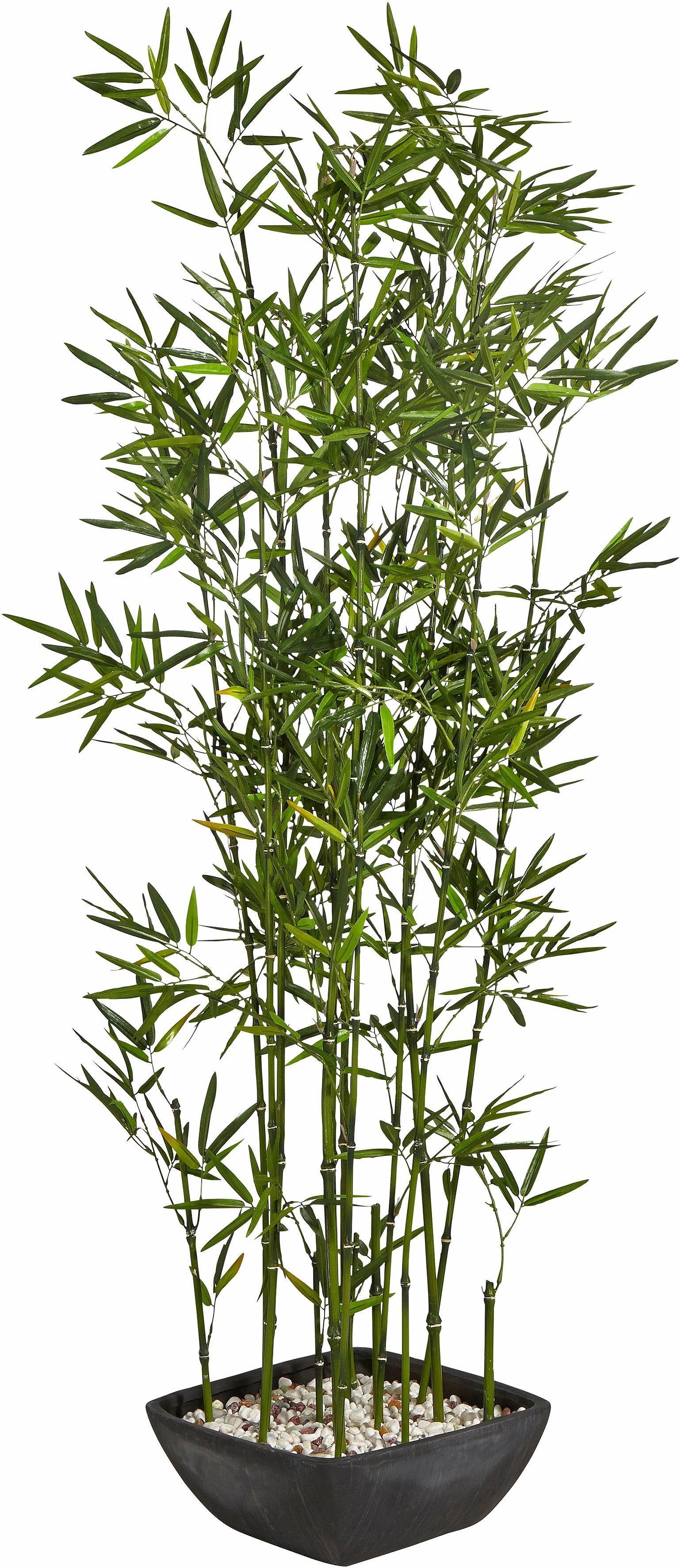 Home affaire Kunstpflanze »Bambus« im Terrakottatopf