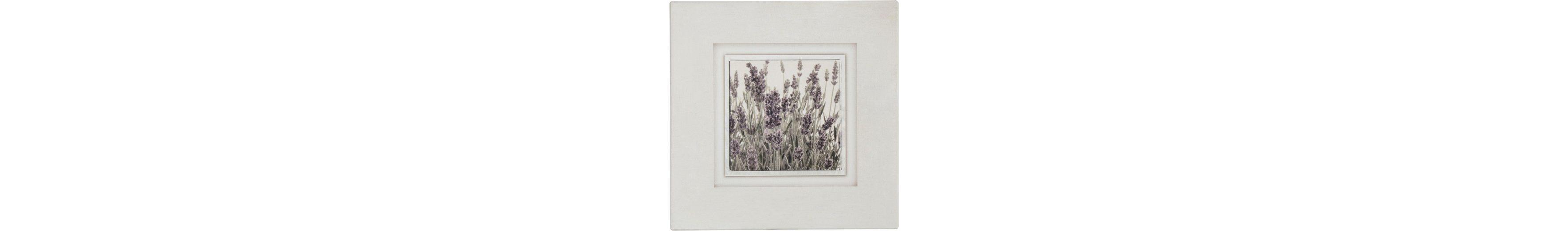 Holzbild, Home affaire, »Lavendel«, 40/40 cm