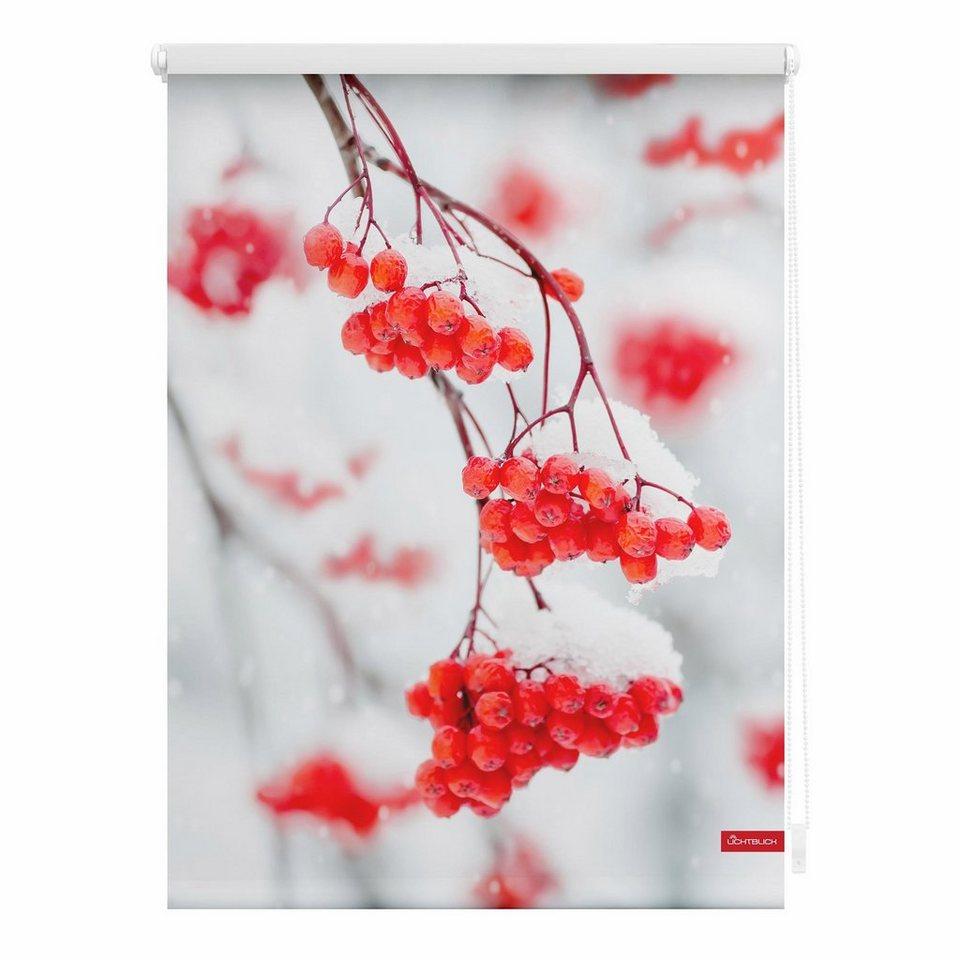 Seitenzugrollo, Lichtblick, »Klemmfix Dekor Vogelbeeren«, Lichtschutz, Fixmaß, ohne Bohren in rot weiss