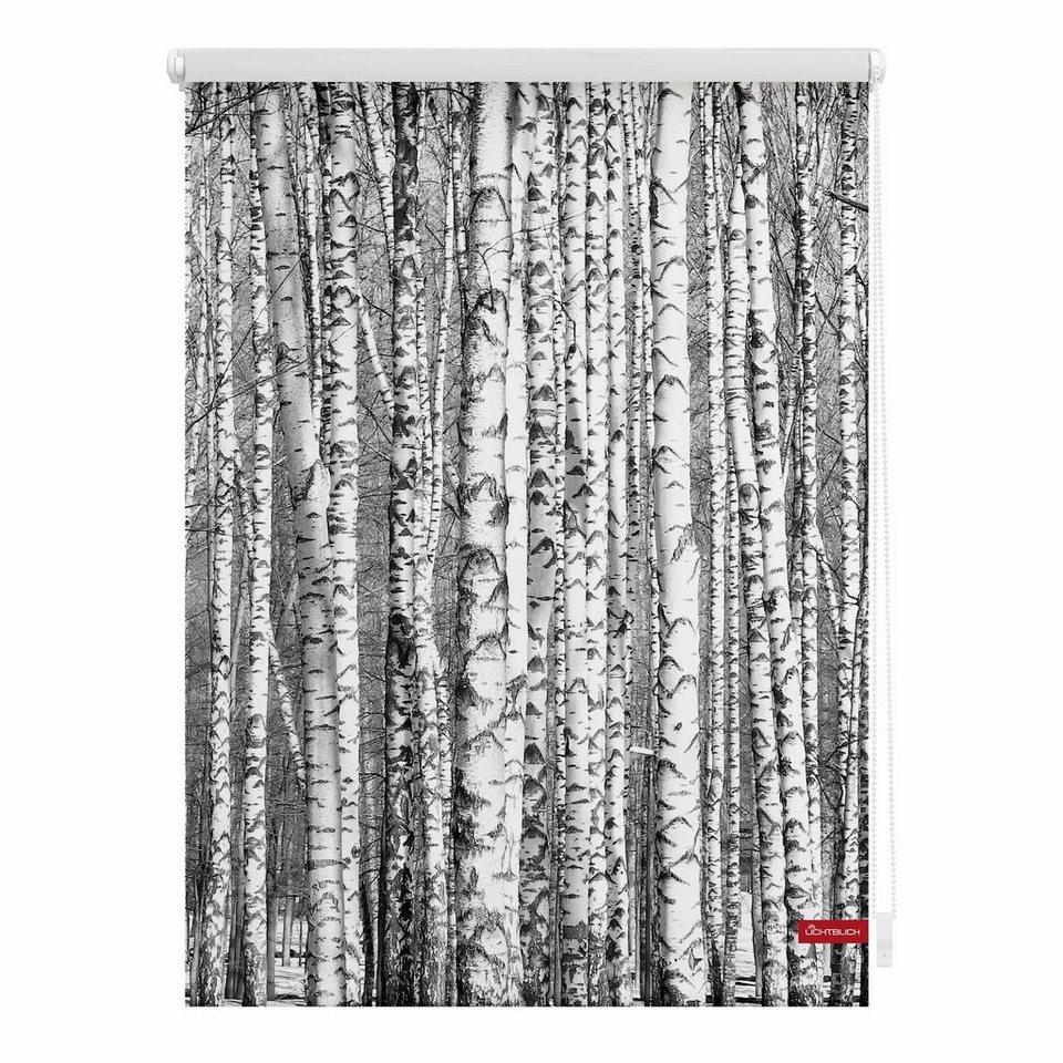 Seitenzugrollo, Lichtblick, »Klemmfix Dekor Birken«, Lichtschutz, Fixmaß, ohne Bohren in schwarz weiss